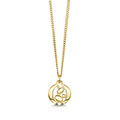 Captivate 9ct Yellow Gold Pendant